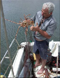 A fisherman with a lobster in his hand